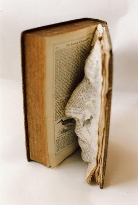 book-face