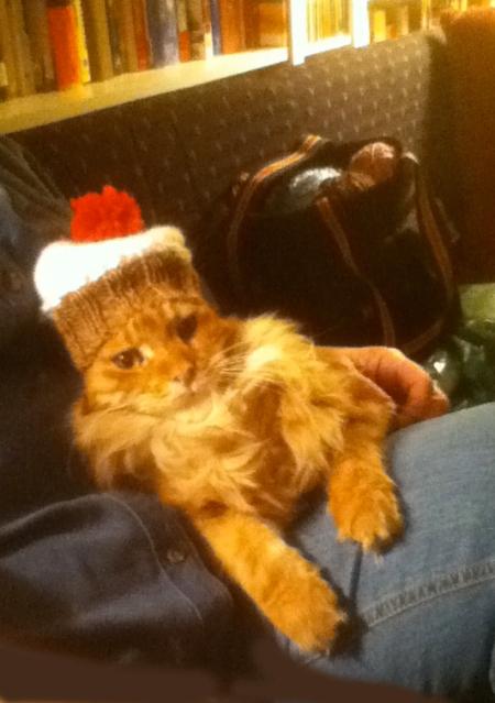 tired hat model