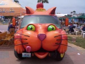 cat car1