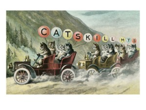 cats-in-cars-catskill-mountains-new-york