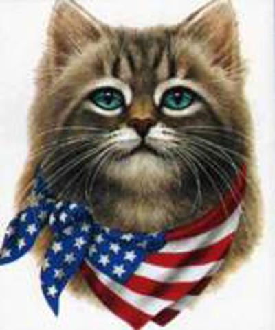 catflag1