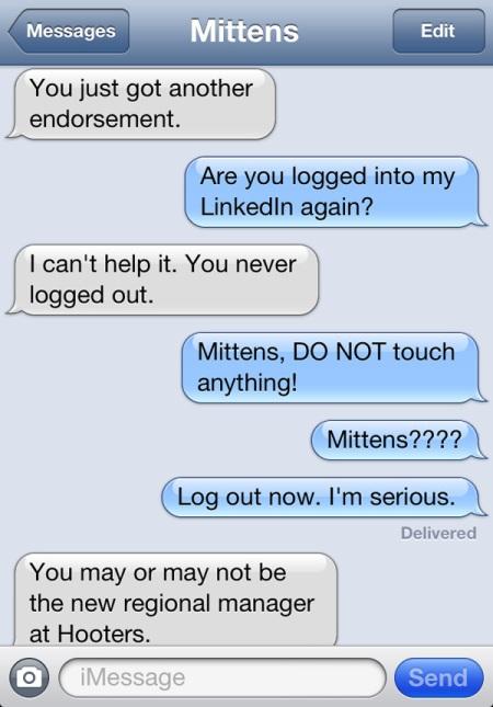 cat texts