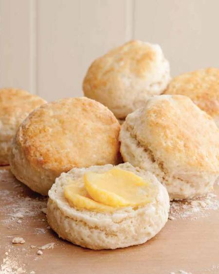 colsanders biscuits_Page_2