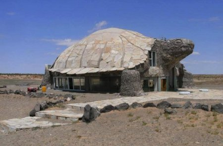 turtle-house-in-desert-awesome-shelter