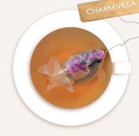 gold-fish-tea-bag-charm-villa-2
