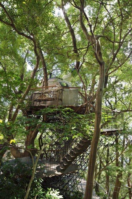 risonare-atami-treehouse-by-hiroshi-nakamura-1