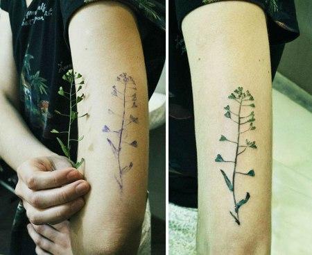 plant-tattoos