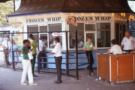 frozen whip