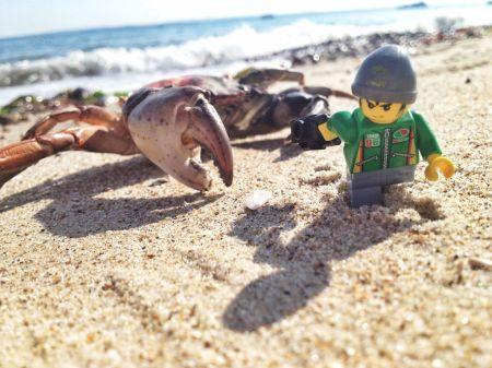 lego-crab
