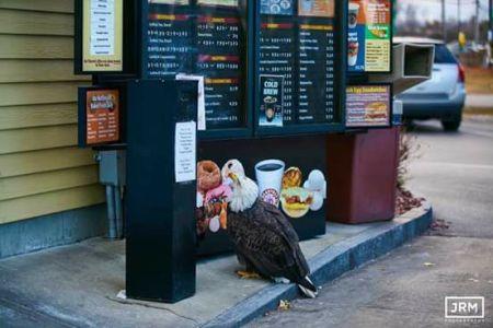 eagle-dunkin